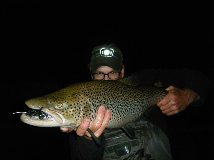 Night fishing for Brown trout